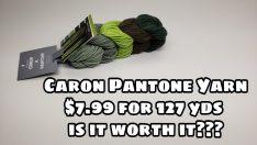 Caron x Pantone Yarn Review – BAGODAY CROCHET VIDEO