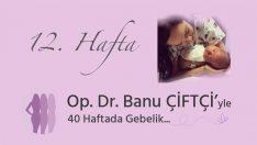 Kiss. Dr. Banu Farmer's 40-Week Pregnancy – Week 12