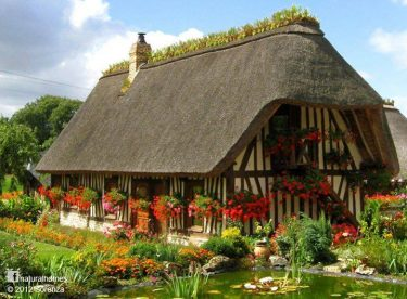 The most interesting, beautiful, natural houses
