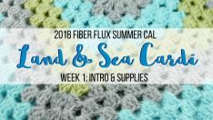 2018 Fiber Flux Summer CAL–Land & Sea Cardi Week 1: Intro & Supplies